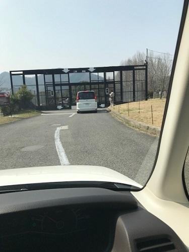 サファリ入口.jpg