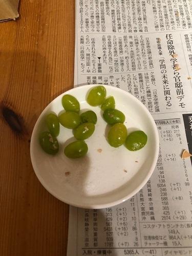 緑色の銀杏の実.jpg